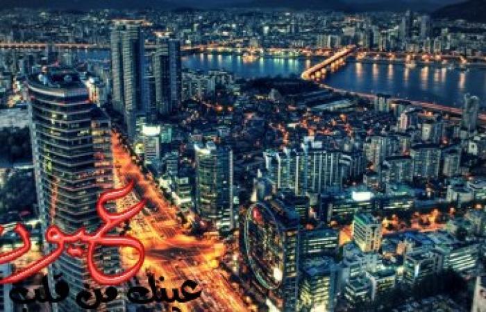 لطلاب مصر فقط || احصل على الدكتوراه مجانًا من كوريا الجنوبية : تعرّف على الشروط