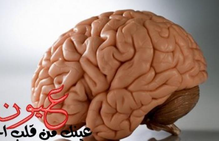 حيل سحرية لتنشيط الذاكرة.. هل تمارس تمارين المخ؟