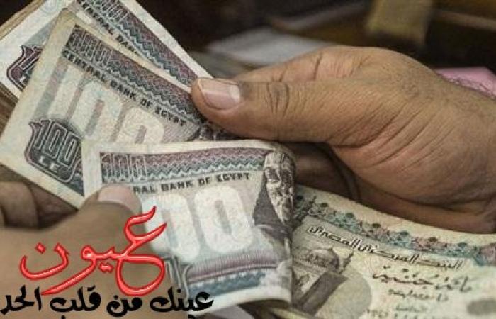 مصادر بـ«المالية» تكشف تفاصيل مشروع تغيير العملة المصرية
