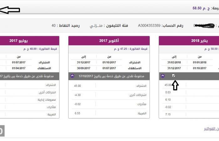 الاستعلام عن فاتورة التليفون الأرضي لشهر يناير من خلال الموقع الإلكتروني للمصرية للاتصالات