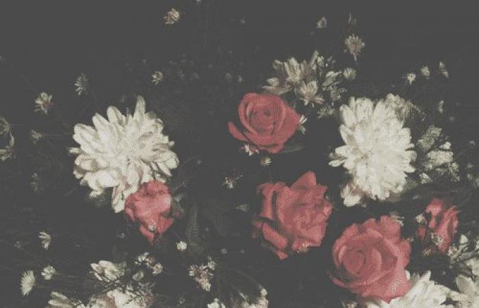 الان ارسل اجمل صور تهنئة عيد الفطر ٢٠١٩ صور العيد احلى مع .. شاركها وأهديها لاحبابك - خلفيات واغلفة تهاني عيد الفطر المبارك