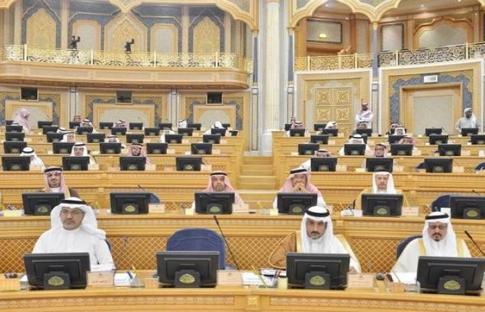 الشورى السعودي يطالب مؤسسة التدريب بالتركيز على القطاع الخاص