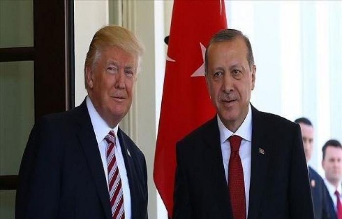 """مستشارة الرئاسة التركية: أردوغان وترامب تفاهما حول عملية """"نبع السلام"""""""