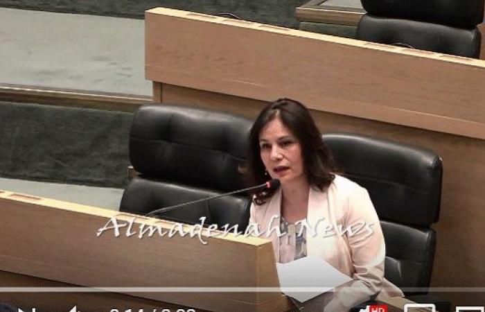 بالفيديو : زواتي تشرح للنواب اتفاقية التنقيب مع شركة امونايت للطاقة