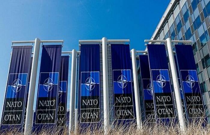 مصدر في الناتو: الحلف لا ينوي تقديم دعم عسكري لتركيا في إدلب