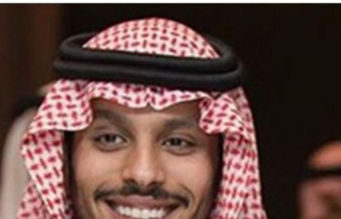 """وزير الرياضة يعتمد تأسيس """"رابطة الرياضات المائية"""" .. وسلطان بن فهد بن سلمان رئيساً لها"""