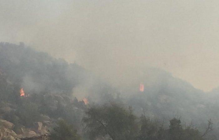 """استمر 3 أيام.. """"مدني محايل عسير"""" يخمد حريقاً بأشجار جبل ضرم"""