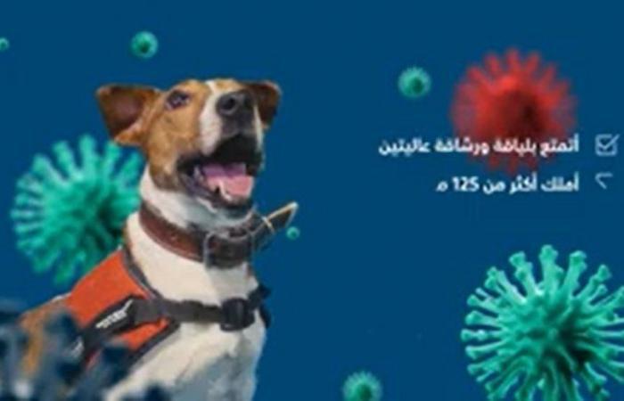 """""""الجمارك السعودية"""" تستعين بـ""""الوسائل الحية"""" للكشف عن المصابين بفيروس كورونا المستجد COVID – 19"""