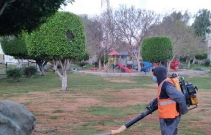 """أمانة عسير وبلدياتها تواجه """"كورونا"""" بتطهير وتعقيم أكثر من 2000 موقع خلال أيام العيد"""