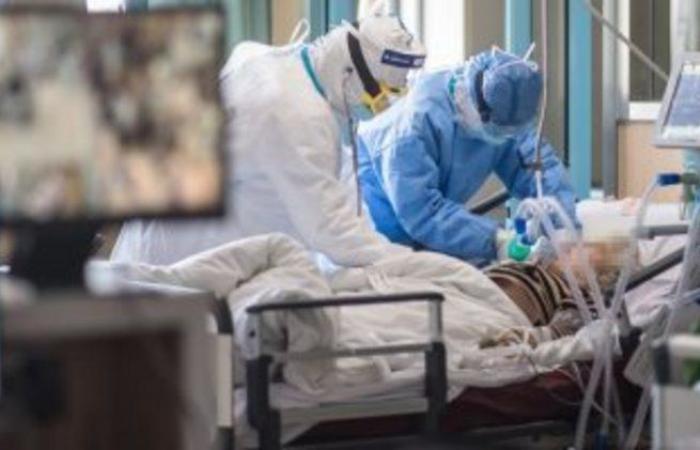 كوريا الجنوبية: 43 حالة إصابة جديدة بفيروس كورونا