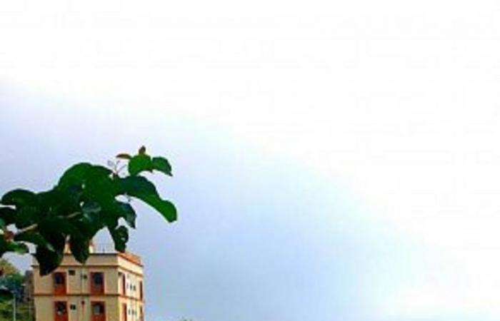 """عرس المطر يرتدي حلته على مدرجات فيفاء.. شاهد """"حدائق فوق السحاب"""""""