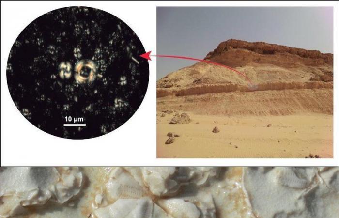 """شاهد .. """"جبال الرشراشية"""" بالقريات: 37 مليون سنة من التاريخ المنسي والمكتشف سعوديًا"""