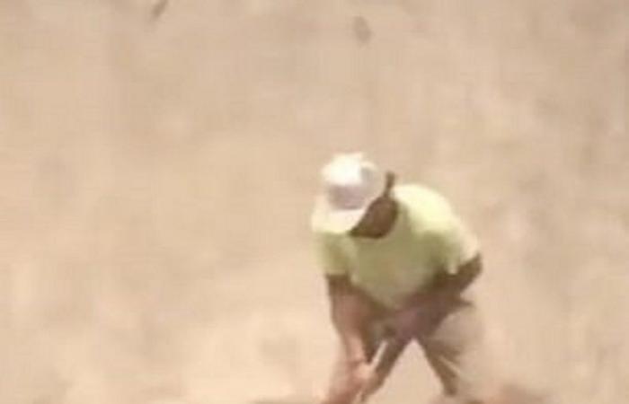 فيديو لا يصدق.. فأر يهاجم رجلاً ويسقطه أرضاً