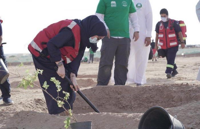 """الرياض.. أكثر من ٥٠٠ متطوع يشاركون في فعالية """"يالله نزرع"""""""