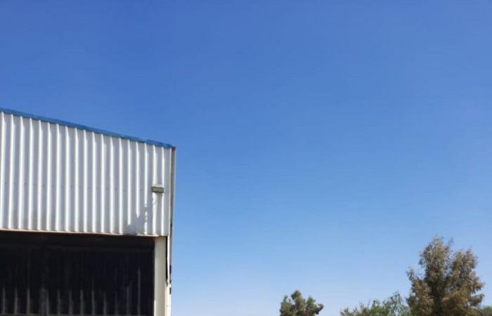 """""""البيئة"""" تضبط وتصادر 12 طنًا من الحطب المعد للبيع في أبها وتنومة"""
