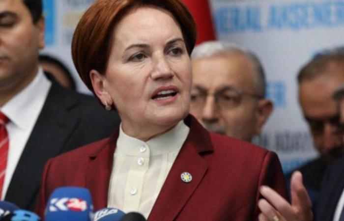 بالعودة للنظام البرلماني.. أكشينار تطالب بسحب صلاحيات أردوغان