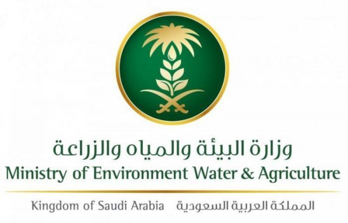 """""""البيئة"""": 200 وظيفة للجنسين بنظام التعاقد في مختلف مناطق المملكة"""