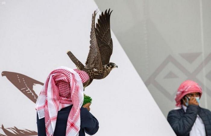 انطلاق النسخة الـ3 لمهرجان الملك عبدالعزيز للصقور
