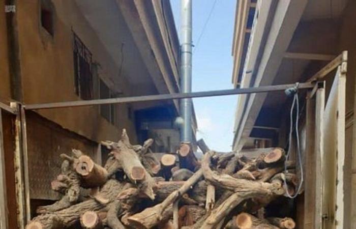 """""""البيئة"""" تصادر 120 طناً من الحطب المحلي في 4 مناطق"""