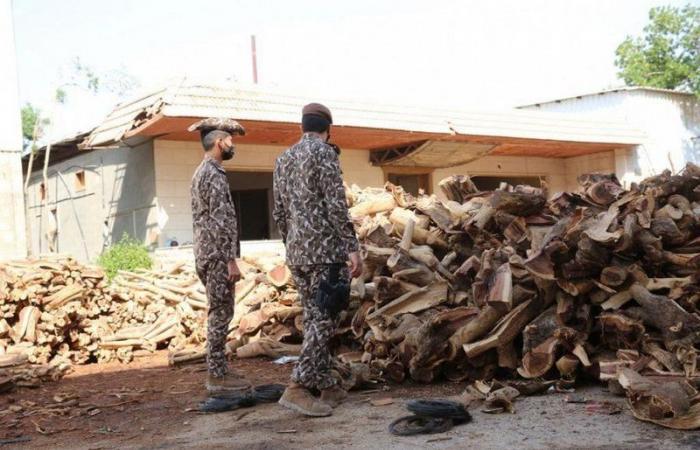القوات الخاصة للأمن البيئي تضبط 93 طنًا من الحطب المحلي المعد للبيع في الرياض