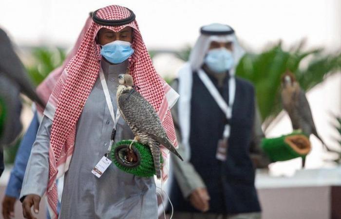 210 صقور تتنافس في خامس أيام مهرجان الملك عبدالعزيز