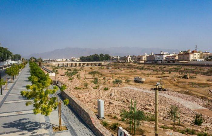 """بالصور.. """"تطوير المدينة"""": تحسين المحيط العمراني لوادي العقيق"""
