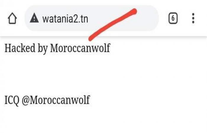 """""""الذئب المغربي"""" يخترق التليفزيون التونسي (صور)"""