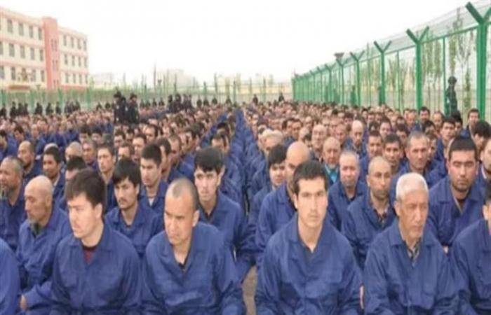 لماذا تخلى اردوغان عن مسلمي الإيغور؟