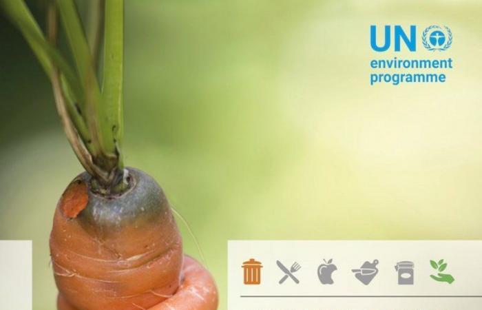 الأمم المتحدة: المملكة قدَّمت دراسات عالية الجودة تتعلق بالهدر الغذائي