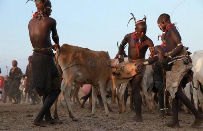 """أغرب القبائل.. """"المورسي"""" الإفريقية يشربون الدم واللبن.. والزوجة تدس """"السم"""" لزوجها لهذا السبب"""