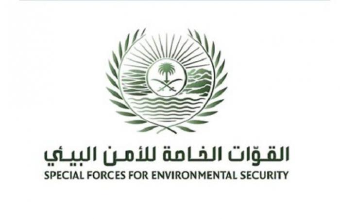 الأمن البيئي: ضبط 48 مخالفًا بحوزتهم 79 مترًا مكعبًا من الحطب المعروض للبيع