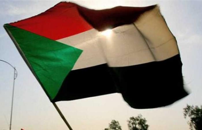 عضو مجلس السيادة السوداني: عازمون على تحقيق السلام