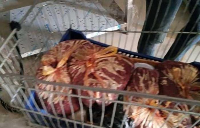التموين : ضبط 1402 قضية تموينية ودواجن ولحوم فاسدة فى القاهرة والمحافظات