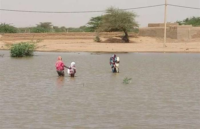 السودان يحذر من وصول مناسيب النيل إلى مستوى الفيضان اليوم