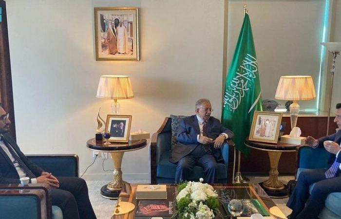 """""""المعلمي"""" يلتقي المندوب الأممي للأردن ويبحثان أهم القضايا على الساحة الدولية"""