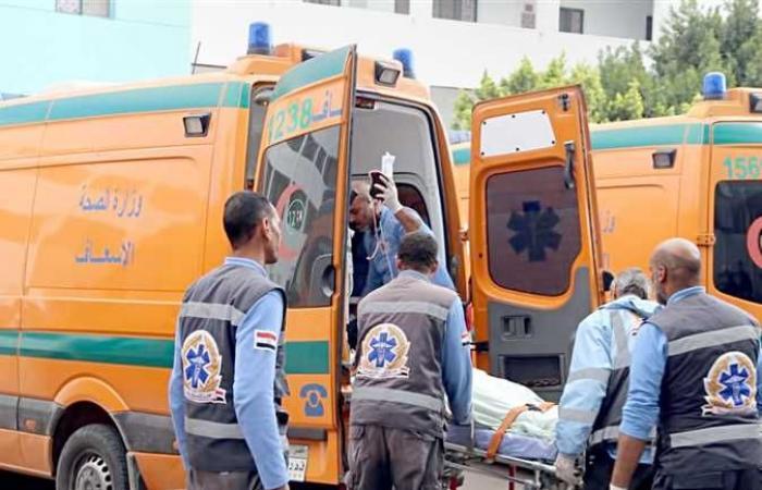 جهود لكشف غموض مقتل فران رميا بالرصاص فى السلام