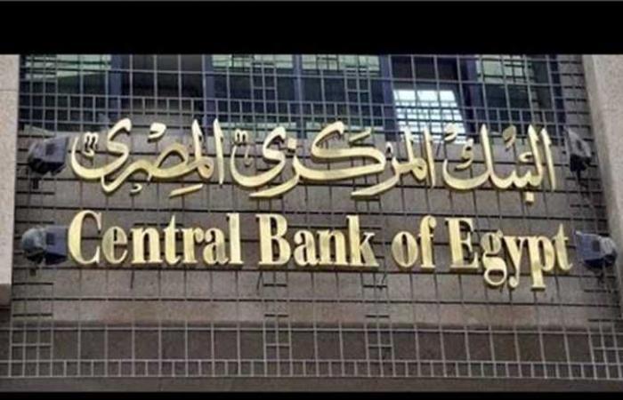 خبير اقتصادي: الثقة في استقرار الجنيه سبب زيادة تحويلات المصريين بالخارج