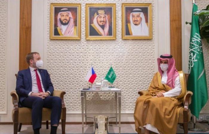 وزير الخارجية يستقبل نظيره التشيكي ويبحثان سبل دعم التعاون الثنائي
