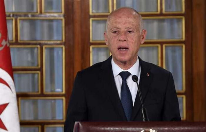 سعيد ينتقد من يدعون الخوف على دستور تونس