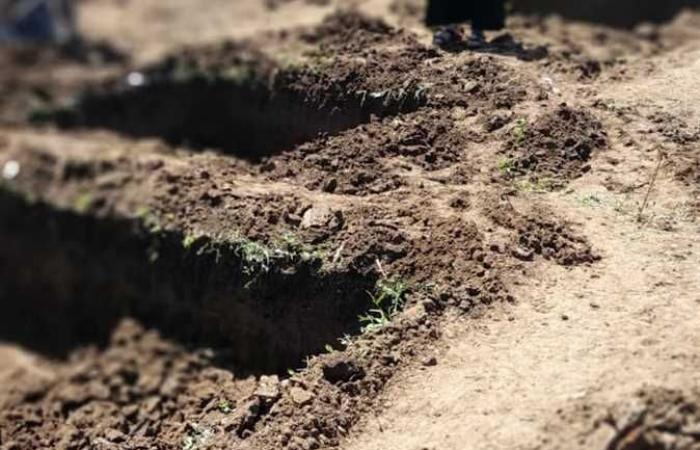 إزالة تعديات على أرض زراعية بمساحة 300 متر بأرمنت غرب الأقصر