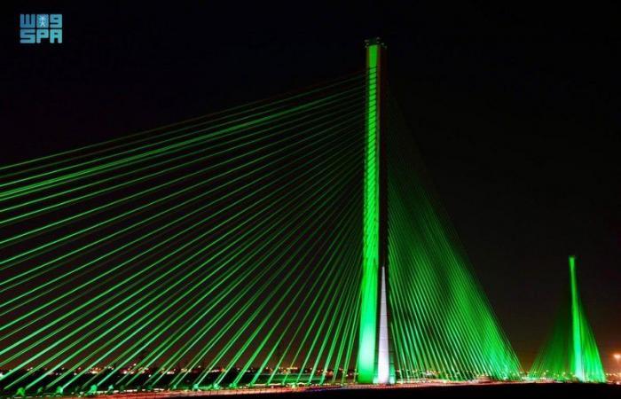 احتفاء بيوم الوطن.. النقل والخدمات اللوجستية تضيء الجسر المعلق في الرياض باللون الأخضر