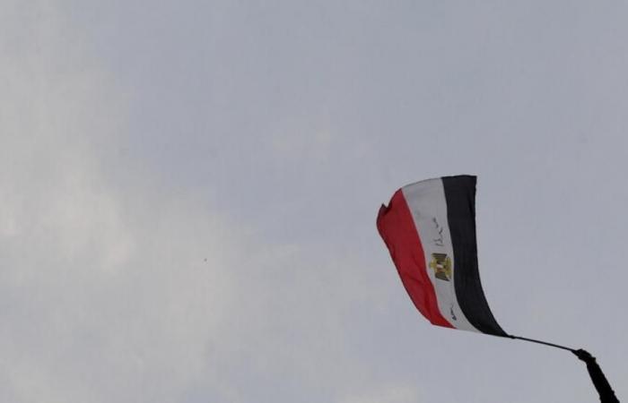 مصر تتسلم 3 شهادت من جينيس