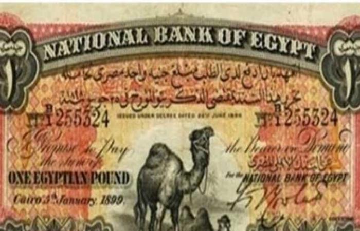 الجنيه أبو جملين يصل سعره لمليون جنيه.. تعرف علي أسعار العملات القديمة وأماكن بيعها