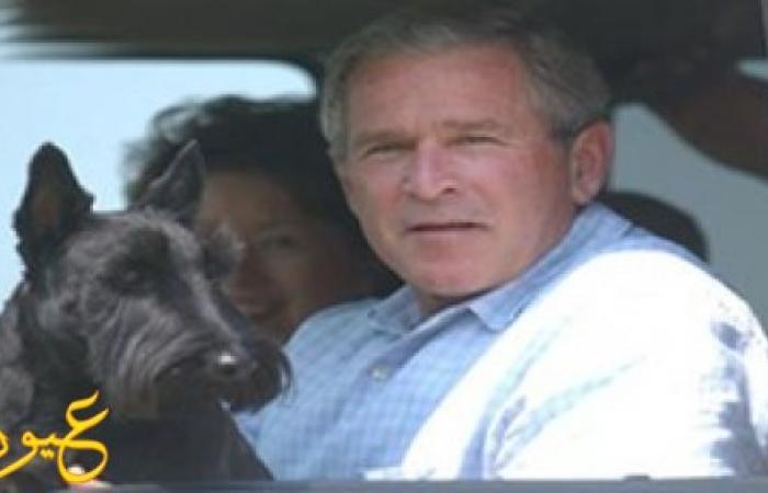 حقيقة القبض على جورج بوش وبحوزته كوكايين