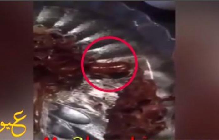 فيديو | مفاجأة صادمة جداً لطالبة جامعية ،أثناء تناولها وجبة الطعام من مطعم الجامعة ،شاهد ماذا وجدت