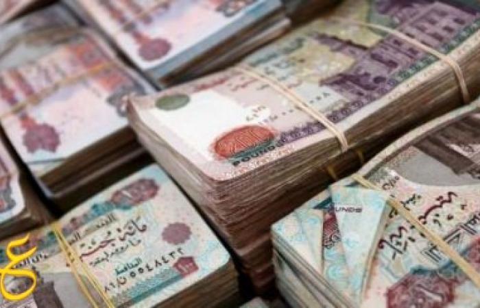 القبض على موظفة بوزارة المالية استولت على 100مليون جنيه