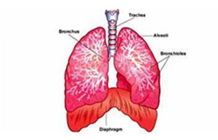 دراسة: الأشعة المقطعية تحد من معدلات وفاة مرضى سرطان الرئة