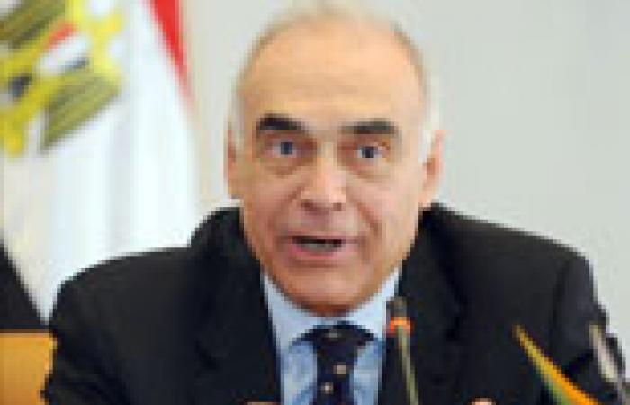 """مصر تشارك في اجتماع """"أصدقاء سوريا"""" بـ""""طهران"""""""