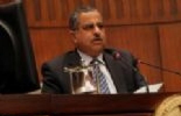 """رئيس """"الشورى"""": مصر حريصة على أمن الخليج بالكامل"""