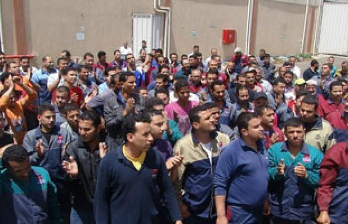 فشل الجهود الشعبية لحل أزمة عمال لب الورق بإدفو